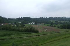 Priory Farm Discovery Walk #14