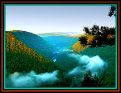 Foggy Morning in the Pennsylvania Grand Canyon (pinecreekartist) Tags: mountains fog clouds landscape pennsylvania canyon pa fourseasons wellsboro chiaramonte pennsylvaniagrandcanyon wellsboropa takeitoutside landscapesdreams pinecreekartist tiogacountypachiaramonte