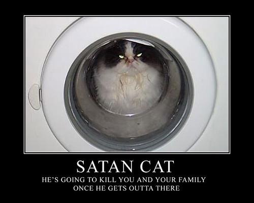 Satan Cat