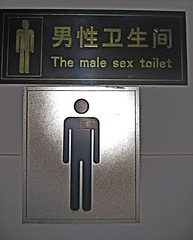 Male sex toilet (Jonas in China) Tags: china signs funny translation chinglish chinesetoenglish