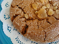 Ginger Cookie from Liz Lovely
