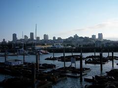 pier39_skyline