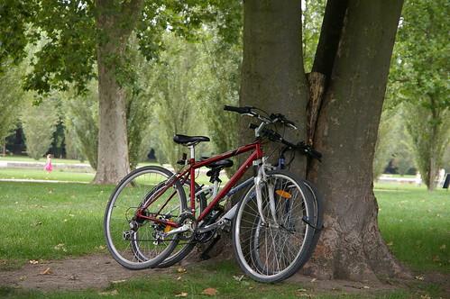 蘇鎮公園 15 再來拍單車