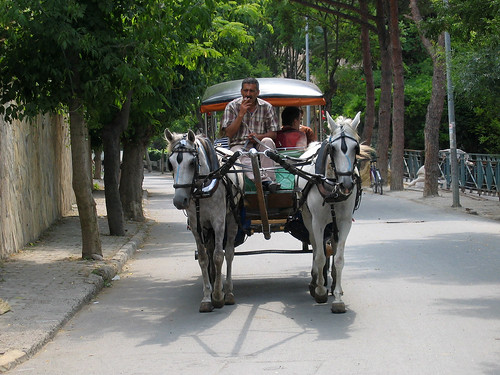 Büyükada carriage