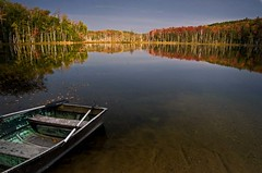 Waiting (baldwinm16) Tags: autumn lake fall maple fallcolor michigan birch upperpeninsula autumncolor waterreflections hiawathanationalforest councillake
