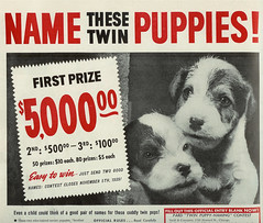 Name These Twin Puppies! (Stuff about Minneapolis) Tags: red food dog vintage puppies contest ad twin advertisement lifemagazine 1939 pard