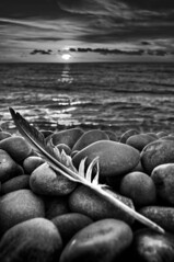 I was dreaming of the past... (petervanallen) Tags: camera uk sunset sea sky blackandwhite white black macro beach monochrome portland grey coast nikon raw map shoreline feather pebbles adobe shore dorset tone hdr jurassic chesilbeach chesil adobecameraraw jurassiccoast d90 tonemapping nikkor18200mmvr 3exp petervanallencom