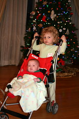 Dec2008 167 (anjanettew) Tags: twins babies fraternal