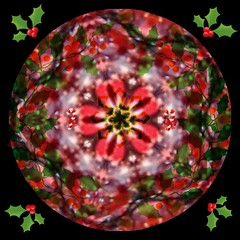 Merry Christmas to All My Flickr Friends (Joana Rojas - still here) Tags: christmas colors stars kaleidoscope mandala holly sensational almostanything thebestofday gnneniyisi