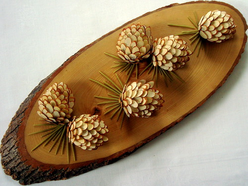 pine cones - almond