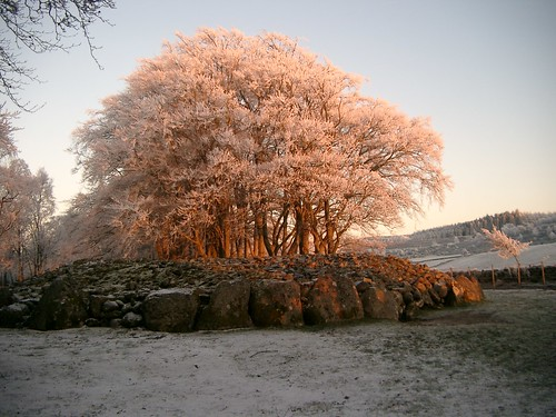 0328 - Frost in the setting sun, Clava Cairns