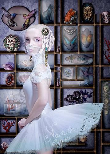 Cabinet de curiosites by Natalie Shau