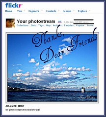 THANKS(40.001 Views)DEAR FRIENDS (sevgi_durmaz) Tags: thanks views congrats forflickrfriends 40000views