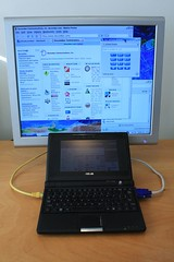 EEEPC screen output to large display