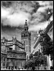 Giralda (Doenjo) Tags: españa sevilla andalucía geotagged catedraldesevilla explore doenjo retofs1 retofs2 iglesias sepiaybn mywinners lmdd instagram