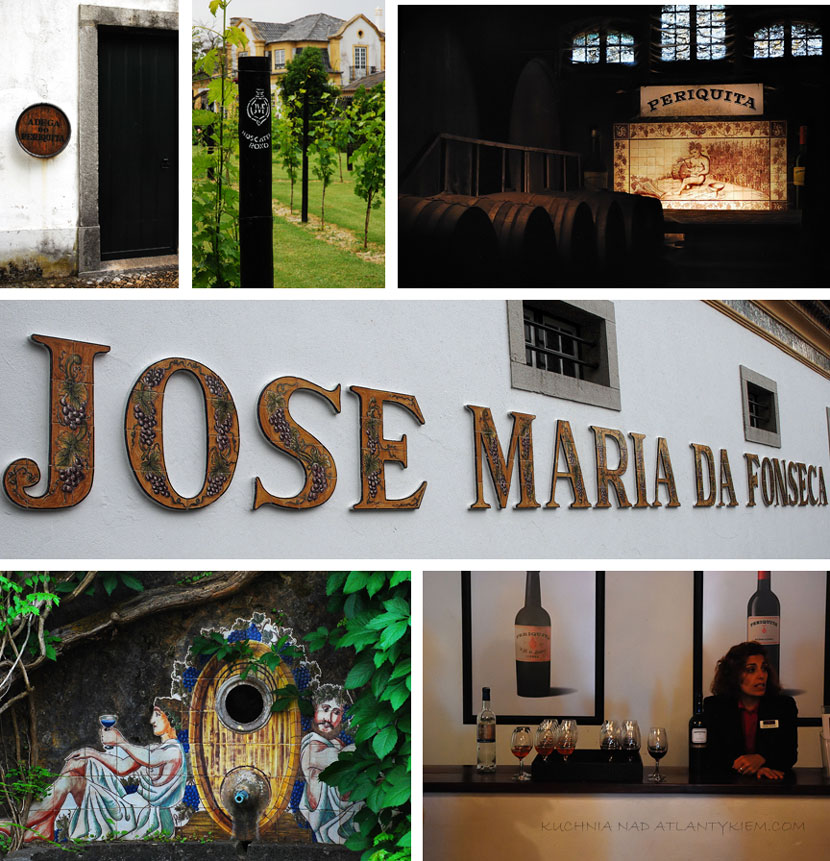 Setúbal peninsula. Jose Maria Fonseca winery.