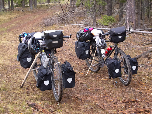 Bikes With Sticks for Kickstands