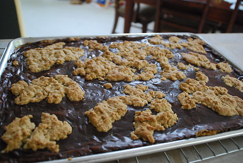 Oatmeal Island Fudge Bars