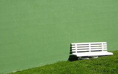 Me cans de esperarte (Juanca V.) Tags: life white verde green blanco beauty for mosca ausencia rizoma camminante platinumphoto aplusphoto flickraward rizhome greenbeautyforlife