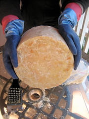 08_Cheese wheel, unwrapped