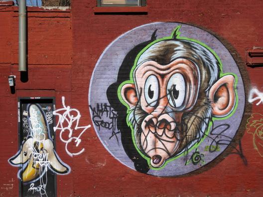 Tagged Monkey