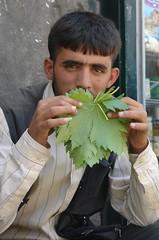 Selling vine leaves in Aleppo (CharlesFred) Tags: street men green vines strada peace market middleeast vine mercado arab syria grapeleaves alp mercato hospitality aleppo streetmarket siria greenleaf honour  syrien syrie grapeleaf vineleaves vineleaf suriye haleb  arabman syrianarabrepublic arabmen    shoufsyria    welovesyria aljumhriyyahalarabiyyahassriyyah siri