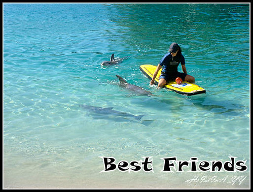 Sea World : Best Friends
