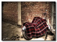 give me a hug (Kris Kros) Tags: california ca street winter usa cold brick love bike photoshop photography la losangeles high nikon hug grafitti dynamic wheels socal blanket need kris motorcycle d200 2008 range hdr kkg cs3 photomatix kros kriskros a 5xp i givemeahug kk2k proudshopper kkgallery