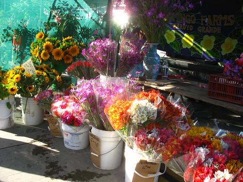 Alstromeria and sunflowers