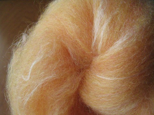Orangecicle batt