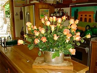 Kitchen-roses