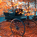 "fallencarriage_golden • <a style=""font-size:0.8em;"" href=""https://www.flickr.com/photos/78624443@N00/2621769491/"" target=""_blank"">View on Flickr</a>"
