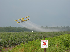 Crop Dusting (magarell) Tags: sign nj atlanticcounty blueberries biplane pinebarrens hammonton cropdusting route206