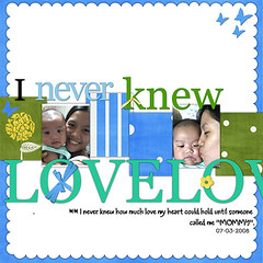Never Knew Love