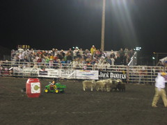 PBR 013 (can_chaser) Tags: rodeo pbr bullriding rodeoclown muttonbustin flintrasmussen