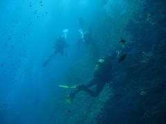 IMG_2010 (Rayas Diving) Tags: medas illes 27072008