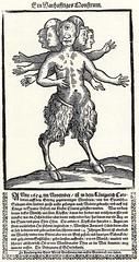 Ulrich d. ., Boas: Ein siebenkpfiges Monster (Kintzertorium) Tags: deutschland barock 1654 kintzertorium