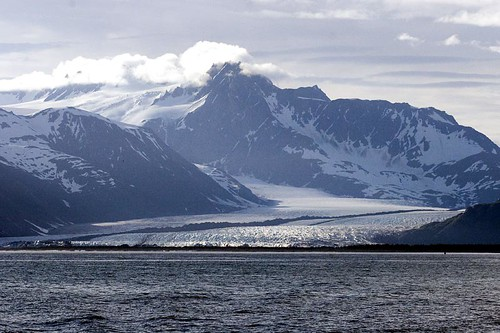 Bear Glacier, Kenai Fjords National Park