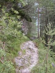 Imm 046 (raistlin7428) Tags: vacanze panorami boschi