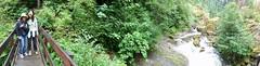 Oregonoramas (Guanatos Gwyn) Tags: streams oregonorama
