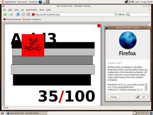 Firefox 1.0.7 et Acid 3