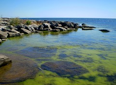 Lrje, Gotland (Per Ola Wiberg ~ Powi) Tags: water sweden balticsea explore harmony juli gotland 1001nights 2008 shiningstar semester sommar stersjn gmt musictomyeyes northstar naturesfinest fotoclub photohobby beautifulphoto theoldport addictedtoflickr mywinners peaceaward photosandcalendar heartawards exemplaryshotsflickrsbest landscapeandseascape goldsealofquality highqualityimage highqualityimage ilovemypics explorewinnersoftheworld rubyphotographer therubyawards beautifulshot overtheshot grouptripod naturestreasures doubledragonawards naturescreations lrje dragonflyawardsgroup comefromlandandsea creativeyeuniverse amazingnaturephotos addictedtonature holycreationsofnature mostbeautifulpictures universeofnature flickrsgottalent bestpeopleschoice superjobs~~expocenter diamondnaturestyle thenaturessoul aboutthenaturewithlove hellofriend
