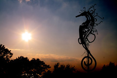 Seahorse of Justice (Todd Douglas Photography) Tags: park sunset sun water clouds canon geotagged rebel bay photo seahorse dslr xsi fairhopeal canon450d canonxsi fairhopealus
