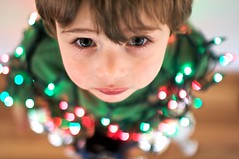 O Christmas Tree (shetha) Tags: portrait tree gabriel canon eos dof child bokeh perspective christmaslights canonef35mmf14l 40d 09calendar decoratedbybigbrother