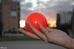 Bola de Contact - Contact ball (GViciano) Tags: contact juggling bola pelota contactball boladecontact
