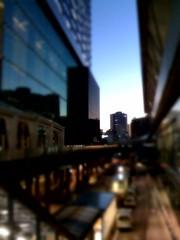 黄昏時。淡い間接光天国で綺麗だ。でも低気温+強風で尋常じゃな いくらい寒い。