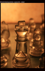 King's robes (kamikazengp) Tags: light etched glass canon chess experiment bamboo hues shatranj nandagopalchess
