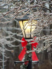 We'll Leave The Light On For You (KaDeWeGirl) Tags: light ice frozen branches explore lantern thegalleryoffinephotography shotb78