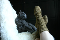 socks-and-the-kitty1