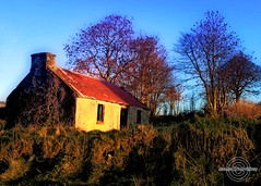 Winter Dereliction ! (James Whorriskey (Delbert Jackson)) Tags: uk ireland winter sky snow tree colors grass cottage londonderry northernireland derelict derry impressionsexpressions aroundus irishlight jameswhorriskey delbertjackson jameswhoriskey ulstercatchy barnauiltroad